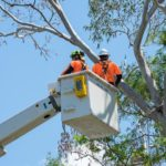 Cherry Picker (EWP)